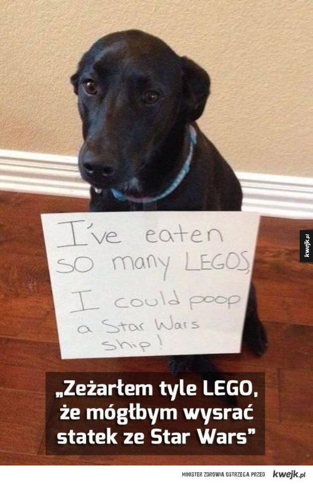 Zjadł lego
