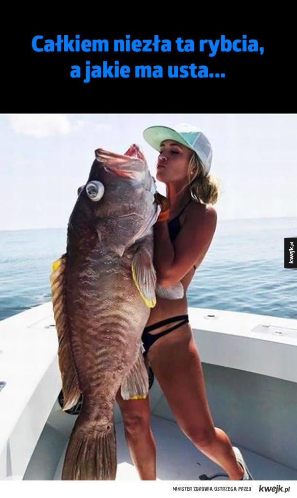 Piękna rybcia
