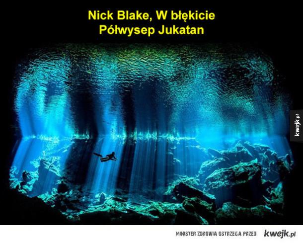 Zwycięzcy tegorocznego konkursu podwodnej fotografii