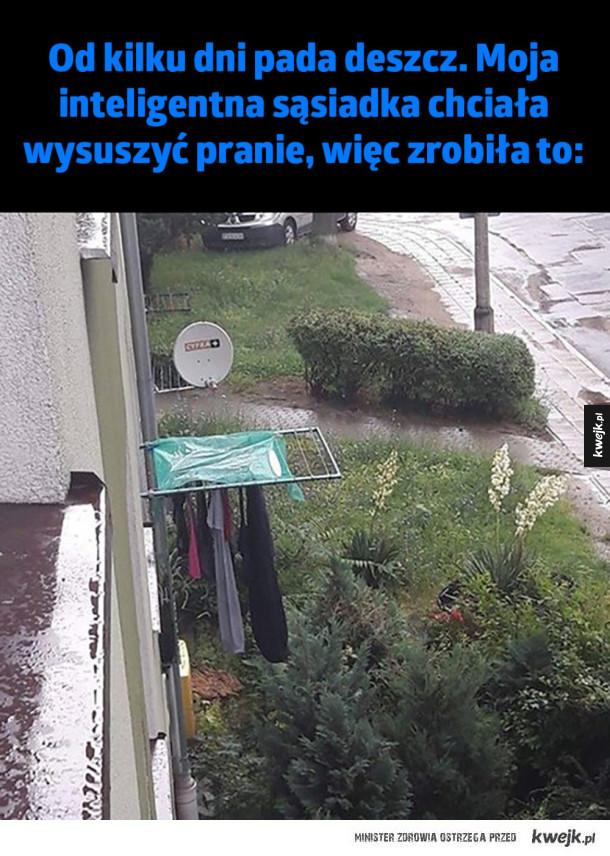 Inteligentna sąsiadka