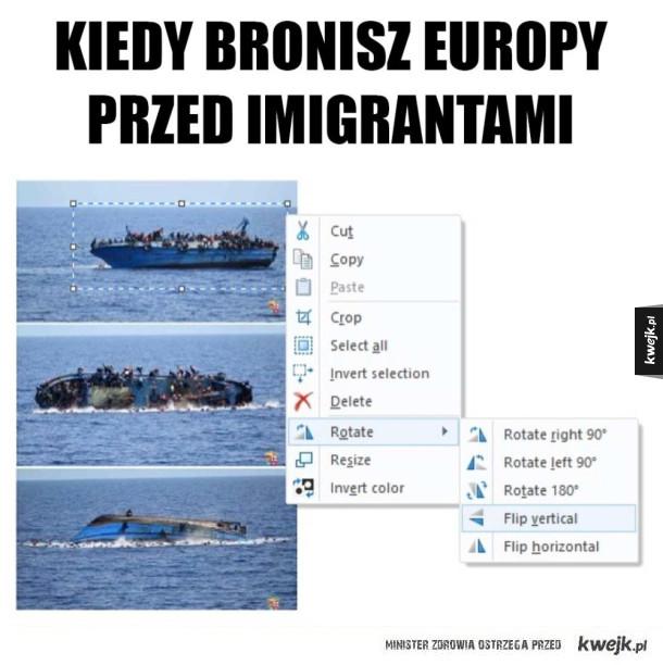 Obrona Europy