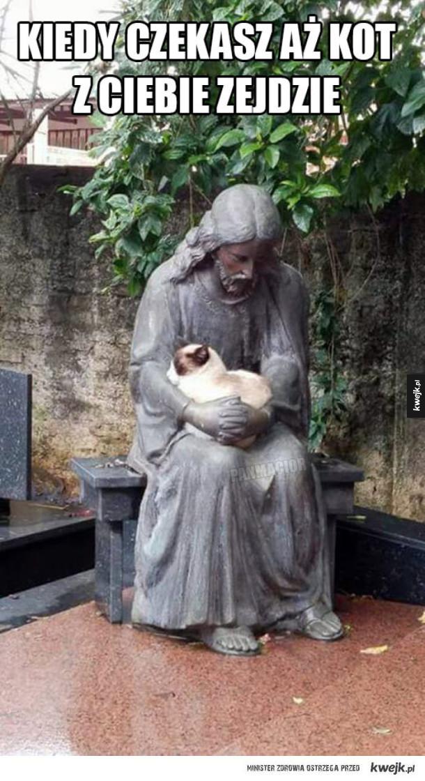 Kiedy czekasz aż kot z ciebie zejdzie