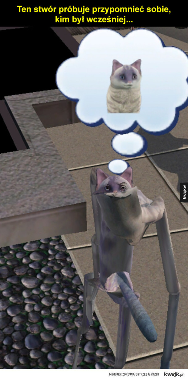 Naprawdę dziwne sytuacje w Simsach