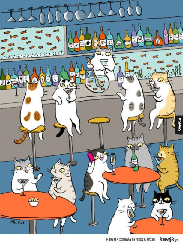 Sekretne życie kotów na ilustracjach Ms Cat