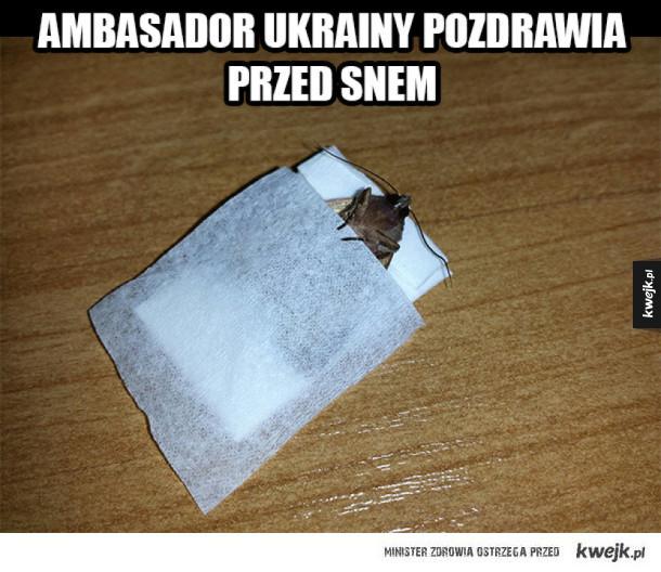 Ambasador Ukrainy