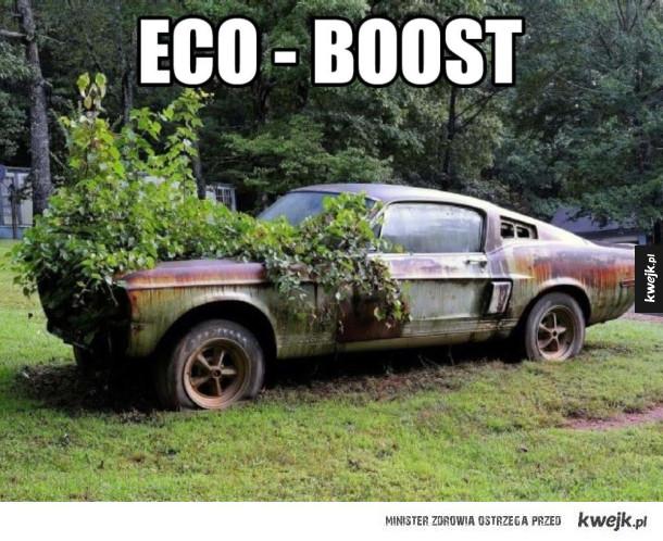 Ekologiczny Ford