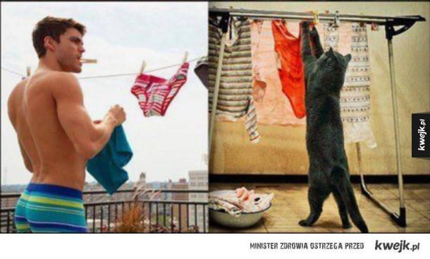 Koty, które udają modeli