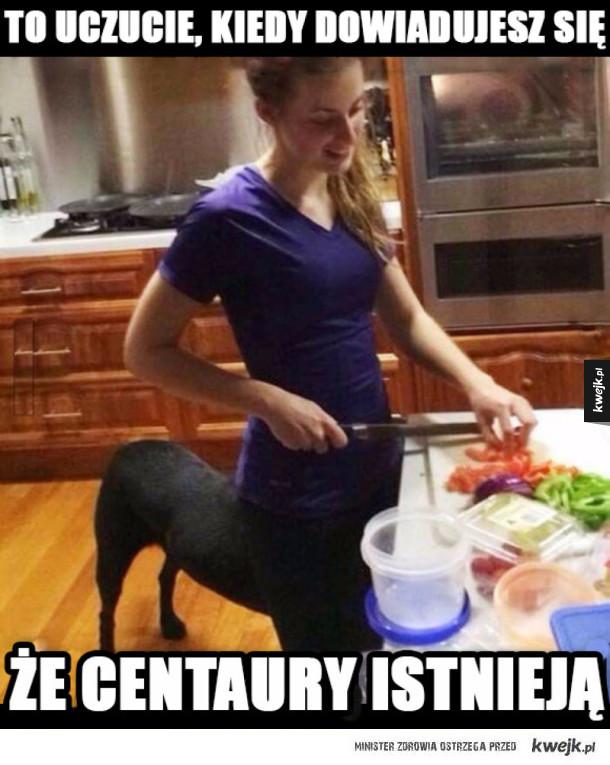 Centaury jednak istnieją!