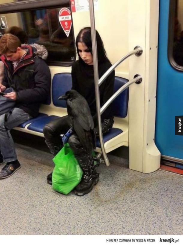 Dziwni ludzie, których można spotkać w metrze
