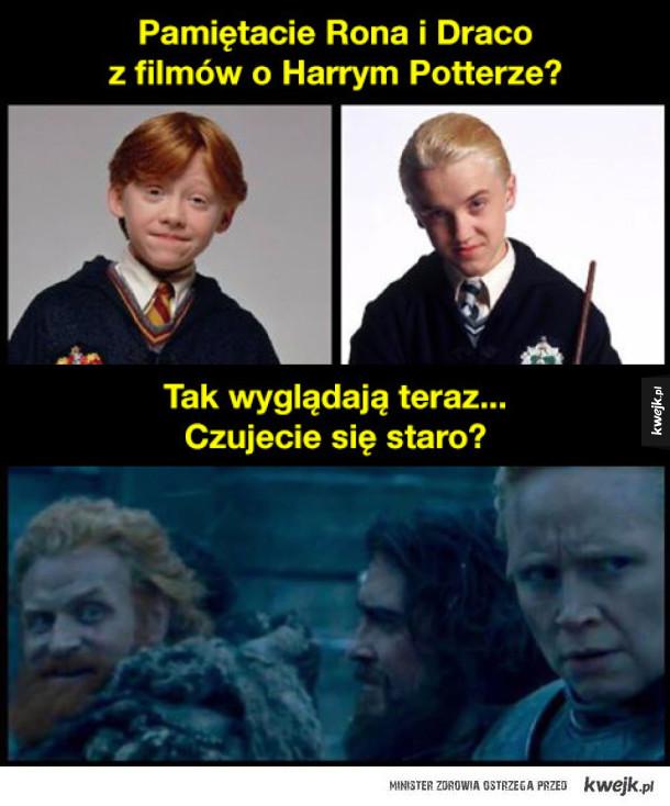 Ron i Draco z Harry'ego Pottera