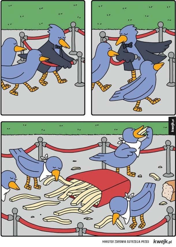 Gołębia uczta