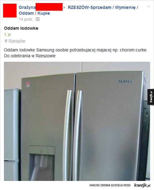 Oddam lodówkę