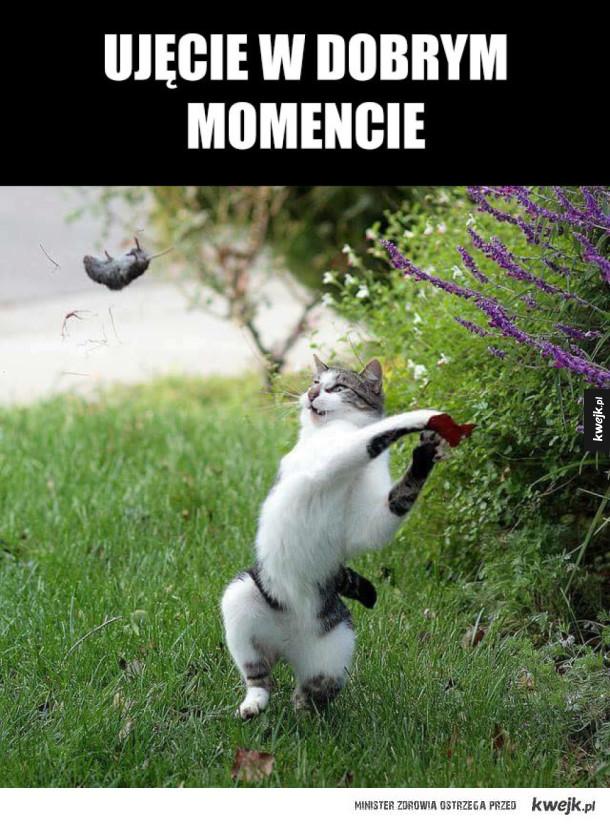 dobry moment