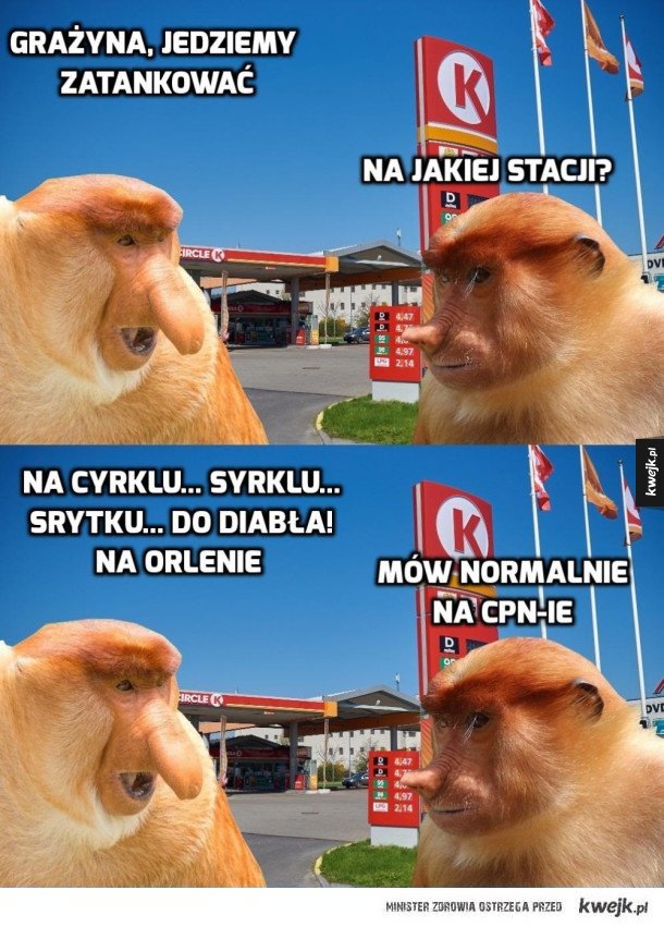CPN i tyle