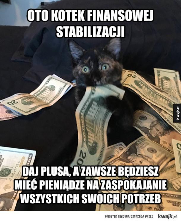 Kotek pieniężny to amulet potężny