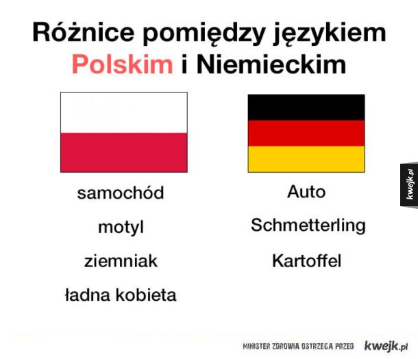 Różnice w językach