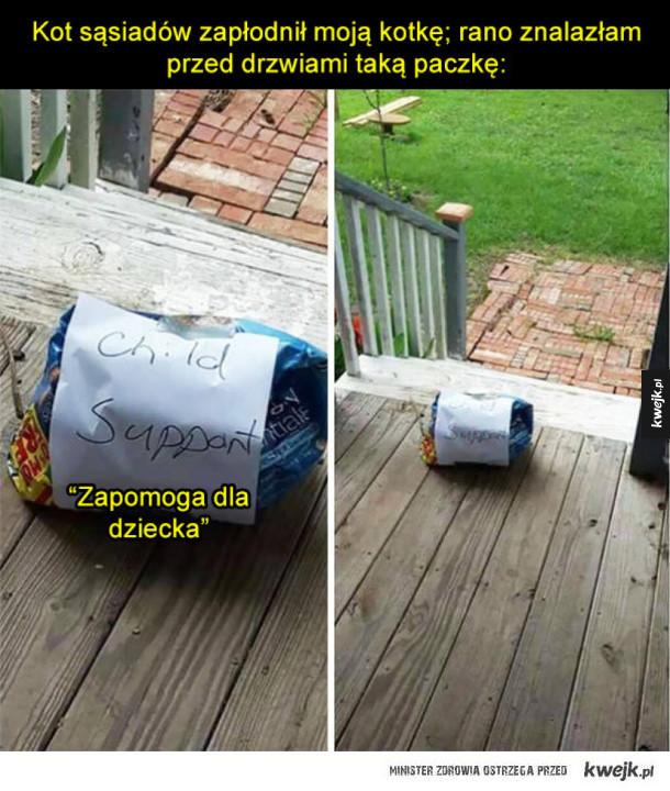 Śmieszki z sąsiadów