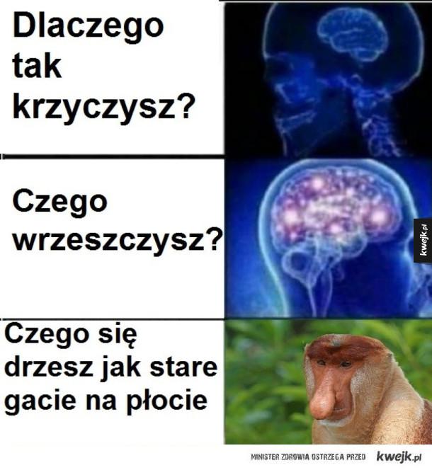Gacie