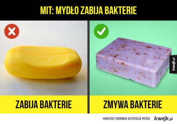 Obalamy kilka popularnych mitów
