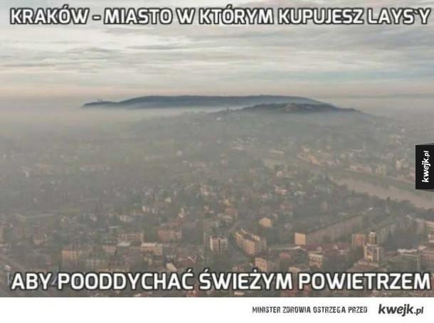 Kraków jedyny w swoim rodzaju