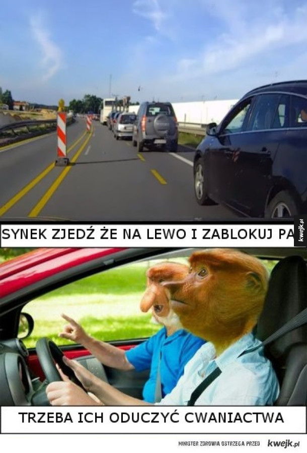 Polak na drodze