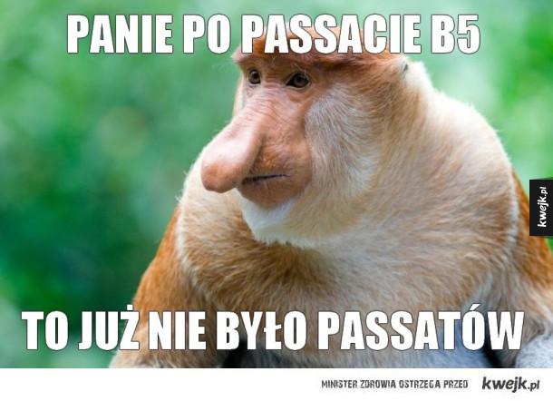 Rozmowa Januszy