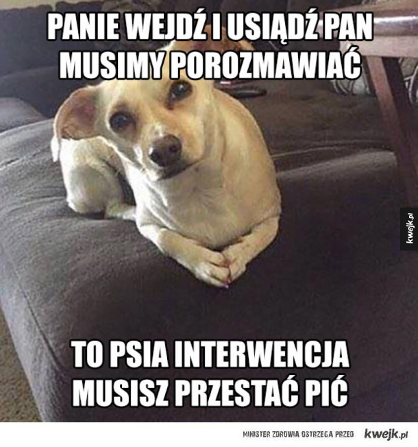 Psia interwencja