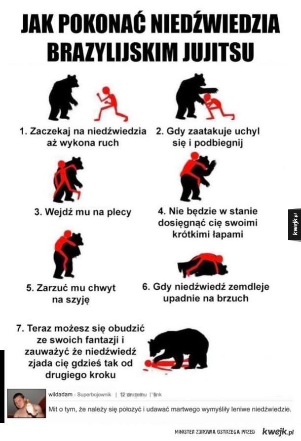 Jak pokonać niedźwiedzia