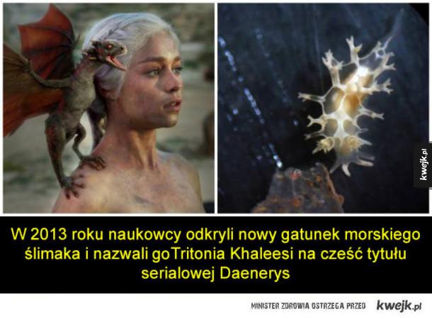 Ciekawostki z Gry o Tron, które nie dotyczą bezpośrednio serialu