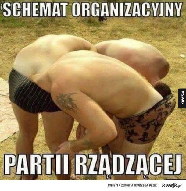 Partia rządząca