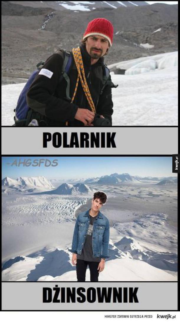 Polarnik