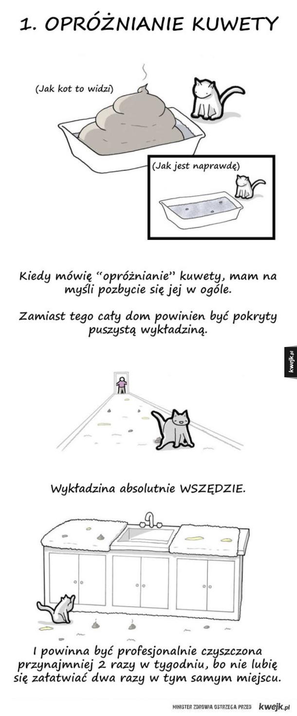 Gdyby koty pisały listy do swoich właścicieli