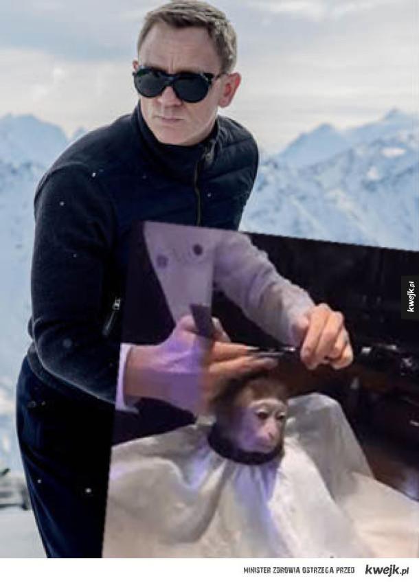 Zabawne memy z małpką