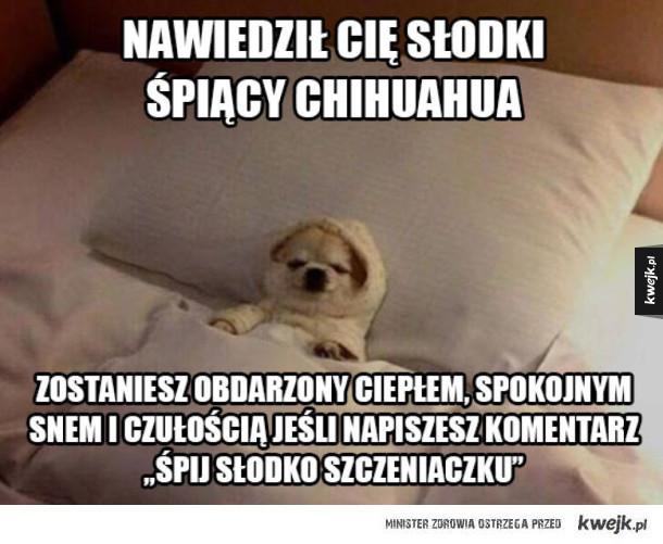 śpij słodko