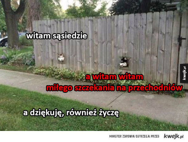 uszanowanko wow