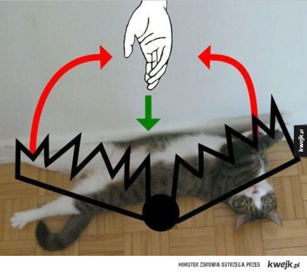 Kocia pułapka - schemat działania