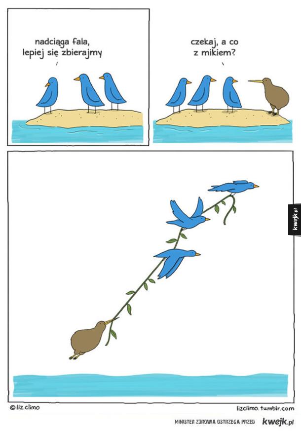 Liz Climo i urocze komiksy o zwierzętach
