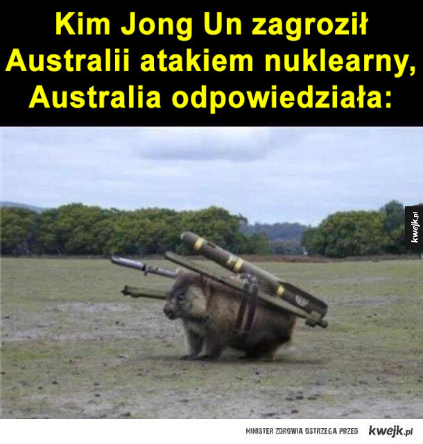 Wombat wojenny