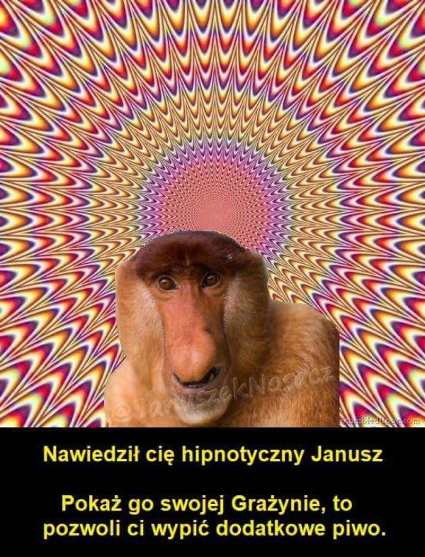 Hipnotyczny Nosacz