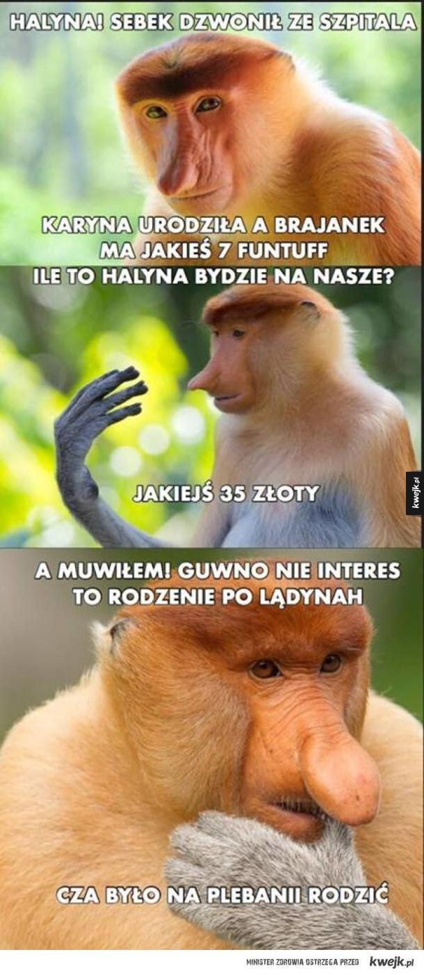 Lepiej w Polsce wiadomo