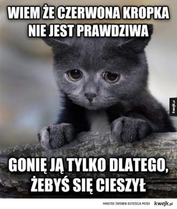 Wyznanie kotełka
