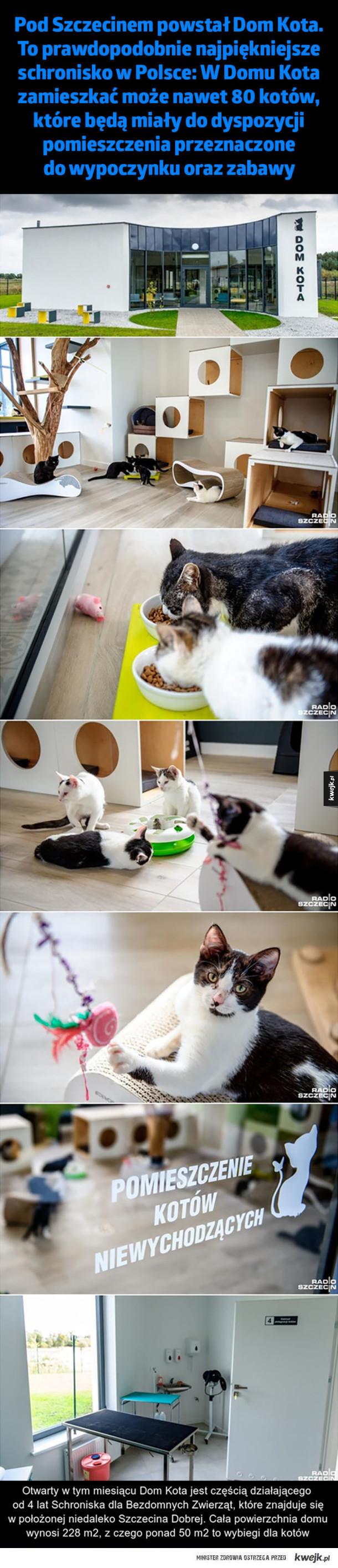 Dom kota