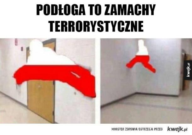 Polska unika