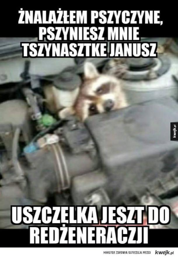 Prawdziwy mechanik