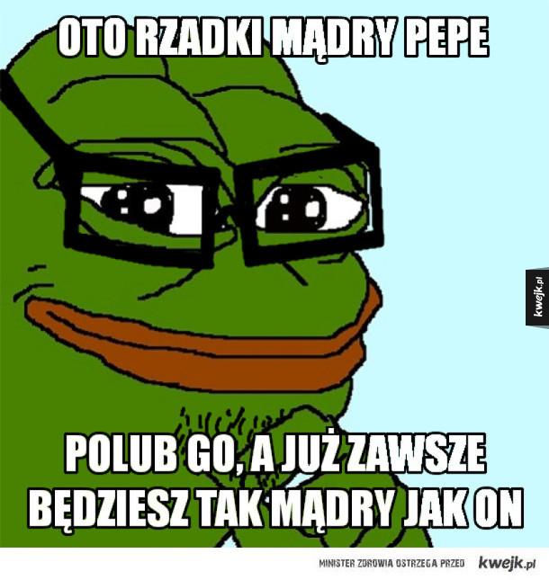 Mądry Pepe