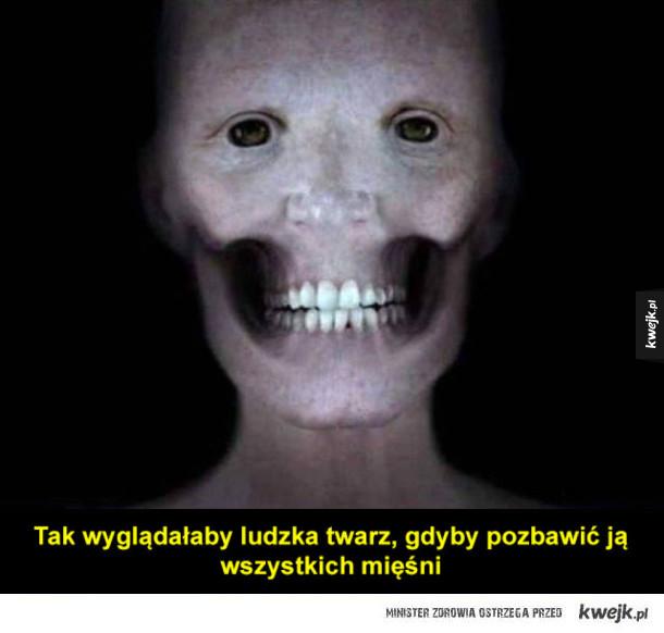Zaskakujące ciekawostki na temat ludzkiego ciała