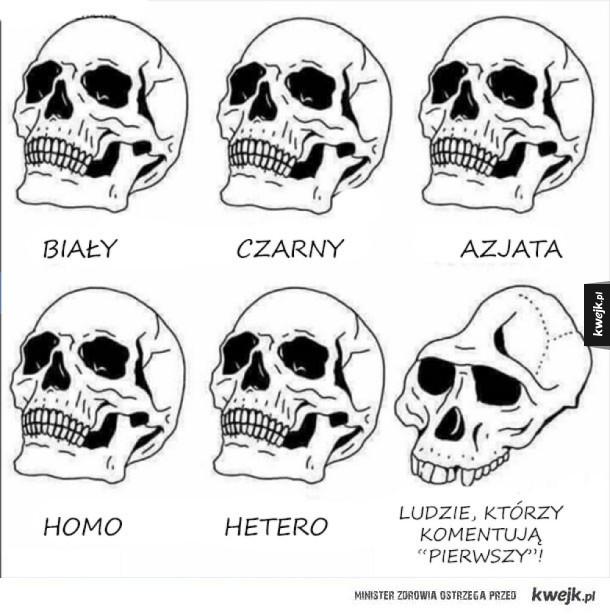 Czaszki ludzi
