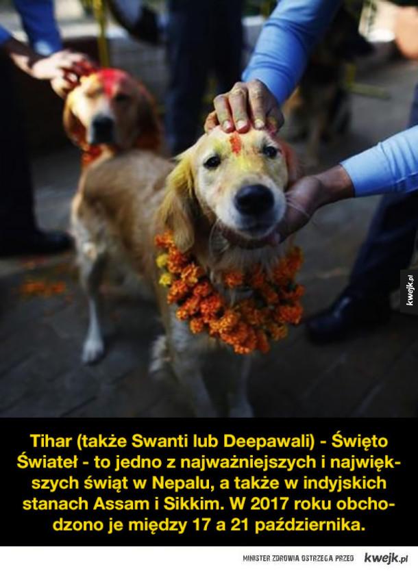 Kukur Tihar, święto psów w Nepalu