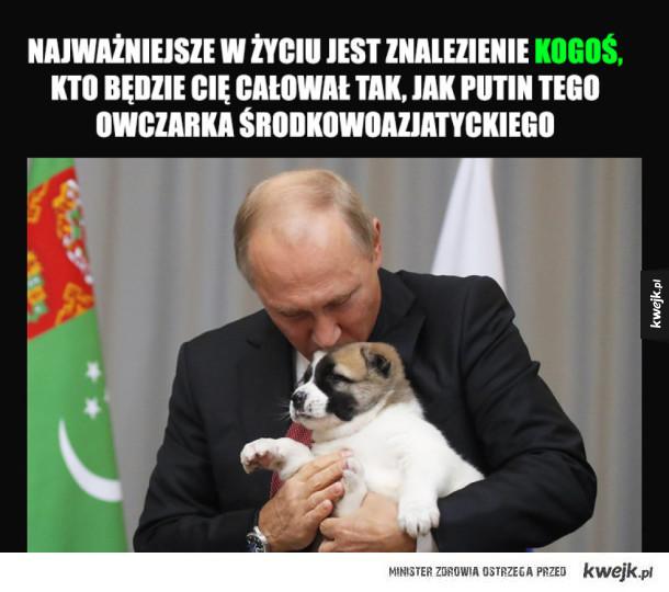 Prezent od Prezydenta Turkmenistanu