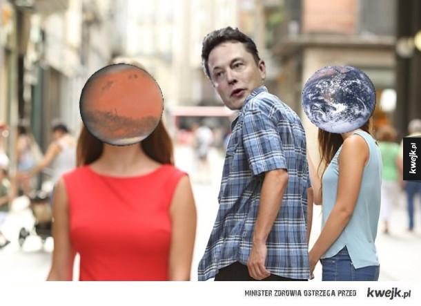 Typowy Elon Musk